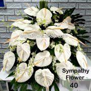sympathy flower 40