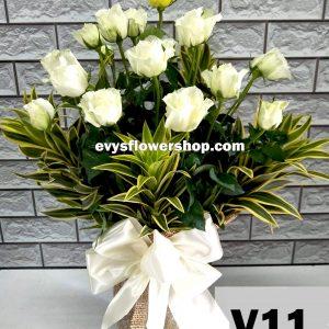 V11, vase of roses, roses, vase arrangement, vase, vase of flowers, flower delivery, flower delivery philippines